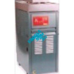 raypak gas heater