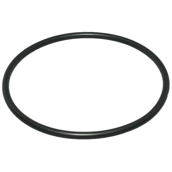 speck magic pool pump lid O ring