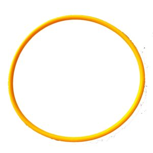astral ca cantabric lid o ring